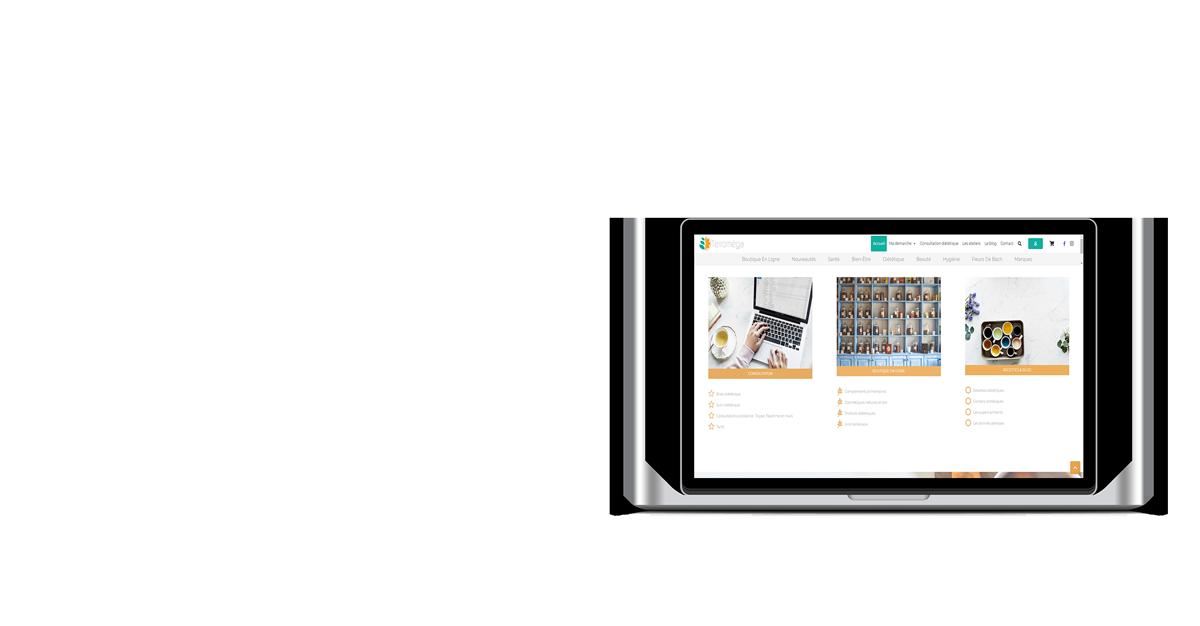 Création de site internet en Vendée mockup terroméga mac book pro