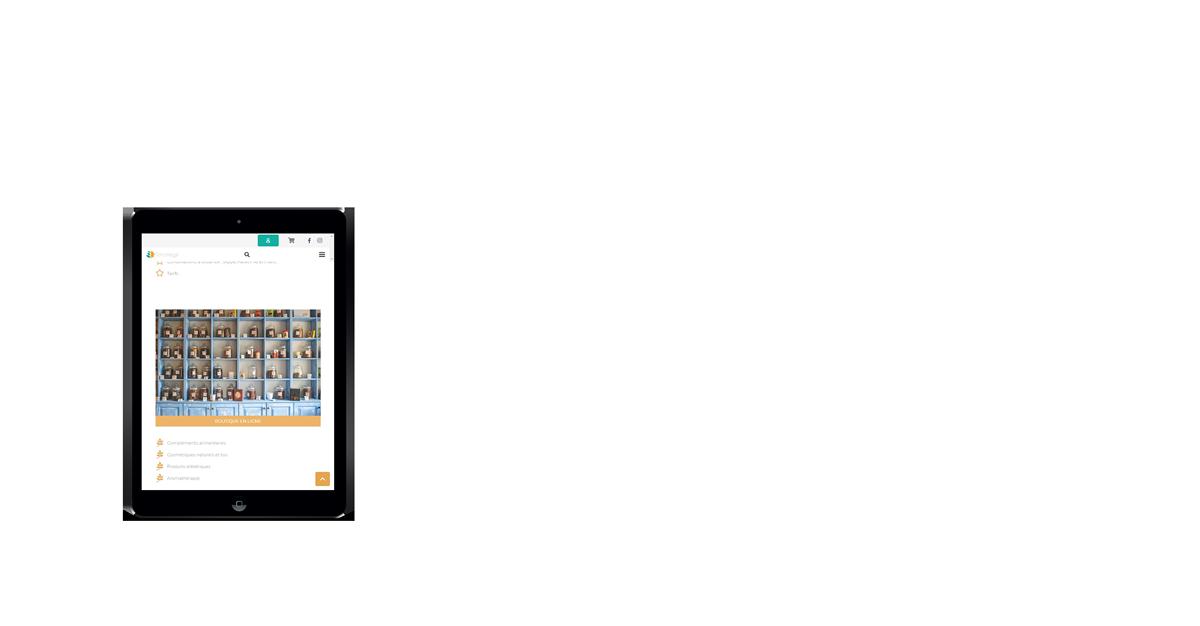 Création de site internet en Vendée mockup tablette apple terroméga